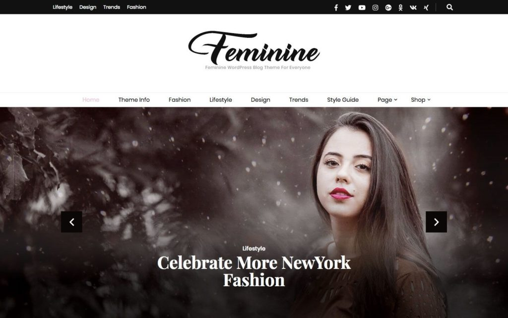 blossom-feminine-wordpress-theme